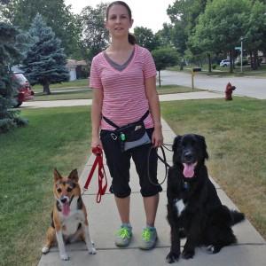 personal-dog-training-illinois-17
